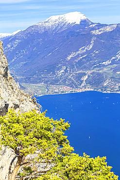 Village of Torbole from Cima Larici, Pregasina, Riva del Garda, Lake Garda, Trento Province, Trentino-Alto Adige, Italian Lakes, Italy, Europe