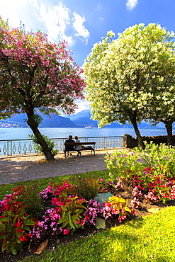 Two people sitting on a bench looking at the lake, Bellagio, Province of Como, Lake Como, Italian Lakes, Lombardy, Italy, Europe