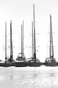 Moored boats in the port of Carloforte, San Pietro Island, Sud Sardegna province, Sardinia, Italy, Mediterranean, Europe