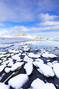 Winter scenery with frozen alpine lake, Stelvio Pass, Valtellina, Lombardy, Italy, Europe