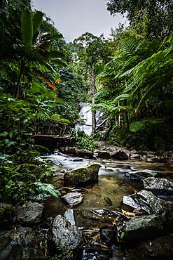 Wachiratharn Waterfall, Doi Inthanon National Park, Chiang Mai, Thailand, Southeast Asia, Asia