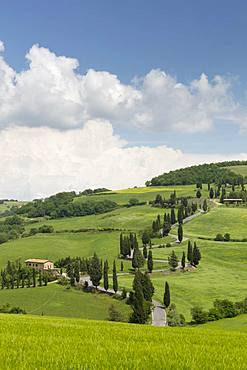 Winding Tuscan road and blue sky near Monticchiello, Tuscany, Italy, Europe