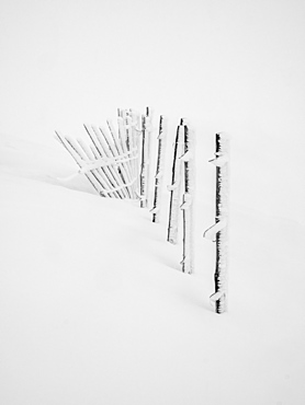 A build up of rime ice on the ski fence during a white out conditions on the Cairngorms, Scotland, United Kingdom, Europe