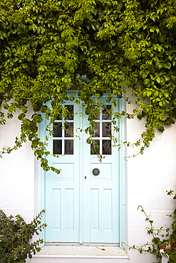 Mint door surrounded by green vegetation on Milos island