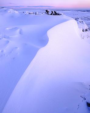 Bank of snow in twilight, Haytor, Bovey Tracey, Devon, England, United Kingdom, Europe