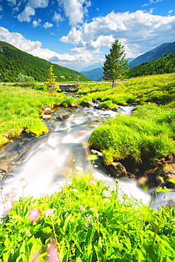Stream in Stelvio National Park, Mortirolo Pass in Vall Camonica, Brescia, Lombardy dsitrict, Italy, Europe