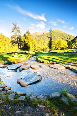 Morning in the park in Val Sozzine, Ponte di Legno, Brescia province, Lombardy, Italy, Europe