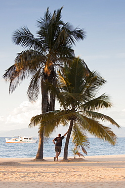 Boy in the shade of palm trees in front of Lake Malawi, Malawi, Africa