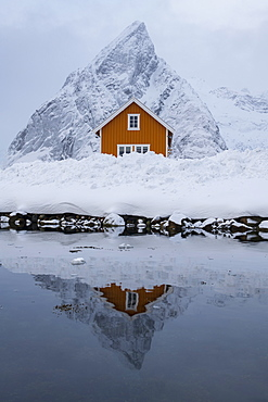 Yellow rorbuer hut reflected in winter, Sakrisoy, Moskenesoya, Lofoten Islands, Nordland, Arctic, Norway, Europe
