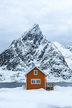 Yellow rorbuer hut in the snow, Sakrisoy, Moskenesoya, Lofoten Islands, Nordland, Arctic, Norway, Europe