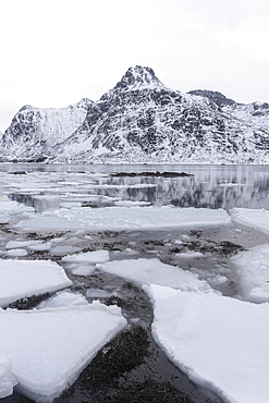 Ice formations and snow covered mountains, Lofoten Islands, Nordland, Arctic, Norway, Europe