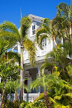 View through palm trees to facade of a typical wooden house, Old Town, Key West, Florida Keys, Florida, United States of America, North America