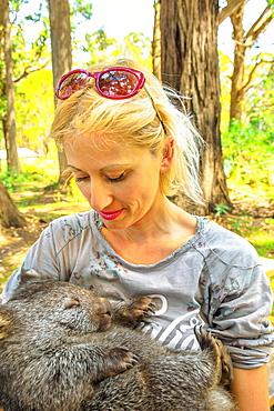 Blonde Caucasian tourist woman holding a cute wombat sleeping in marsupial position, Tasmania, Australia, Pacific