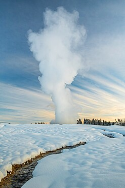 Sunrise eruption of Old Faithful geyser with stream, Yellowstone National Park, UNESCO World Heritage Site, Wyoming, United States of America, North America