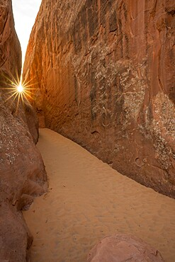 Sunburst over a sandy dune, Arches National Park, Utah, United States of America, North America