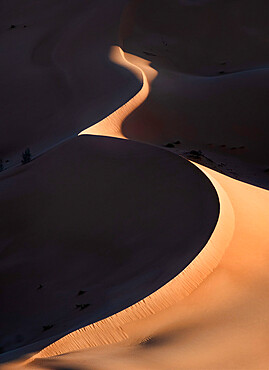 Sand dunes at sunrise with high contrast in the Rub al Khali desert, Oman, Middle East