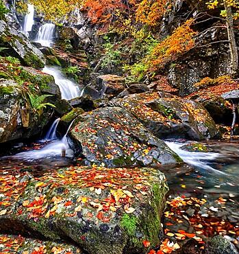 Dardagna Waterfalls in autumn, Parco Regionale del Corno alle Scale, Emilia Romagna, Italy, Europe