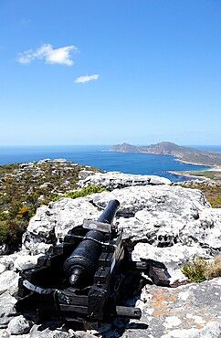 Old Dutch cannon used to signal Cape Town when ships came into Table Bay, Kanonkop, Cape Point Nature Reserve, South Africa, Africa