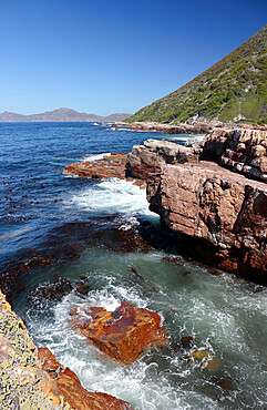 Looking south towards Cape Point over False Bay, Cape Point Nature Reserve, nr Cape Town, South Africa