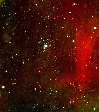 NGC 2362, Caldwell 64, Tau Canis Majoris Cluster, Open Cluster