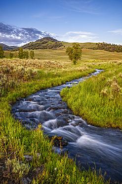 Rose Creek at Lamar Buffalo Ranch, Yellowstone National Park, Wyoming.
