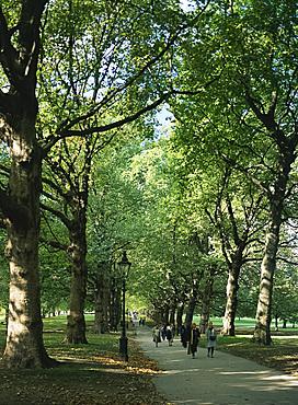 Green Park, London, England, United Kingdom, Europe