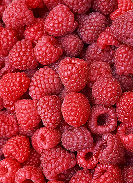 Close-up of fresh raspberries
