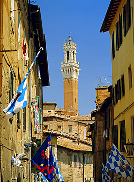 Houses and Torre del Mangia, Siena, Tuscany, Italy *** Local Caption ***