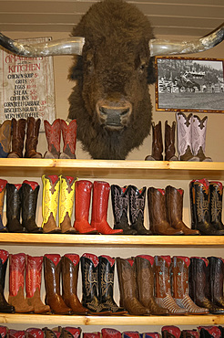 Display of ornate cowboy boots and buffalo head in a shop in Aspen, Colorado, USA, North America