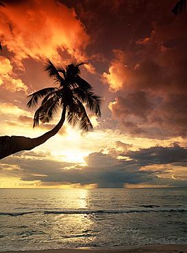Sunset, Anse Takamaka, island of Mahe, The Seychelles, Indian Ocean, Africa