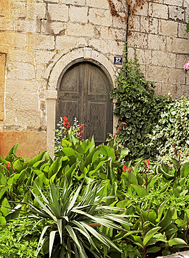 Old door and exotic garden, Korcula, Dalmatia, Croatia, Europe