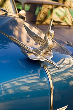 A hood ornament (mascot) on the bonnet of a vintage American Chevrolet, Havana, Cuba, West Indies, Central America
