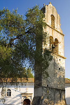 The stone belltower of Agios Constantinos in an olive tree grove, Paxos, Ionian Islands, Greek Islands, Greece, Europe