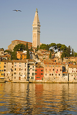 The Cathedral of St. Euphemia and the colorful old Venetian style buildings of Rovinj reflected in the sea at sunrise, Istria, Croatia, Europe