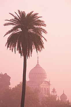 The misty silhouette at sunrise of the Gurdwar Dam Dama Sahib, a Sikh temple seen from the garden of Humayun's Tomb, Delhi, India, Asia