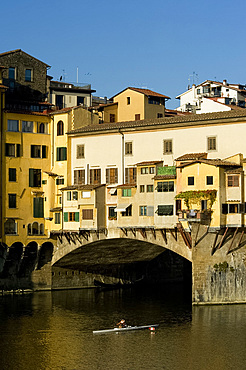 A rower headed under the Ponte Vecchio, Florence, UNESCO World Heritage Site, Tuscany, Italy, Europe