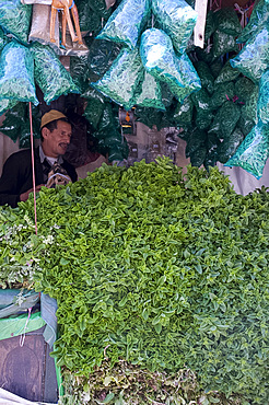 A stall with piles of fresh mint for sale in the main square, (Jemaa El Fna), Marrakech, Morocco, North Africa, Africa