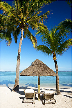 Palm trees and white sand beach near the Lux Le Morne Hotel on Le Morne Brabant Peninsula, Mauritius, Indian Ocean, Africa