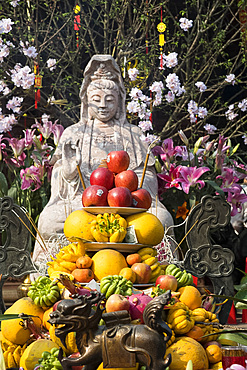 Tet Lunar New Year offerings of fruit and money at the Diem Huu Pagoda in Hanoi, Vietnam, Indochina, Southeast Asia, Asia