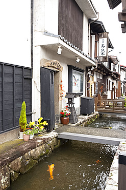 Traditional old Japanese houses on White Walled Storehouse Street along the carp filled Setogawa Canal in Hida Furukawa, Gifu Prefecture, Honshu, Japan, Asia