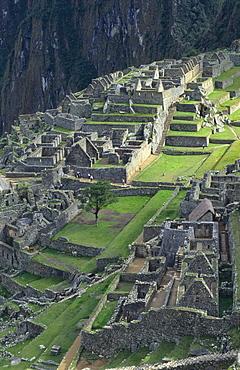 Machu Picchu Ancient Ruins, Peru