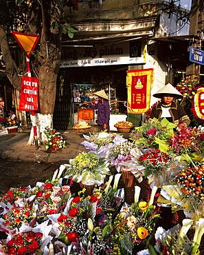 Flower market stalls, Hanoi, Vietnam, Indochina, Southeast Asia, Asia