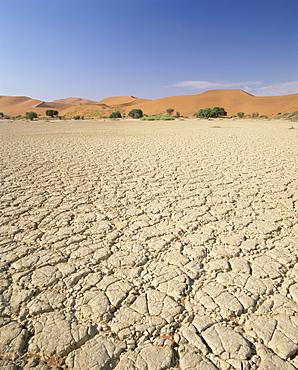 Cracked mud flats and sand dunes, Sossusvlei, Namib-Naukluft Park, Namibia, Africa