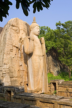 Giant statue dating from the 5th century, of the standing Buddha giving a blessing with his right hand, and lifting the robe to signify reincarnation with his left hand, Aukana, Sri Lanka, Asia