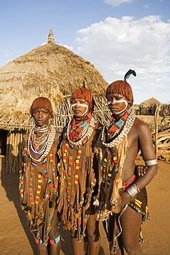 Portrait of three young women of the Hamer tribe, their hair treated with ochre, water and resin and twisted into tresses known as goscha, Lower Omo Valley, southern Ethiopia, Ethiopia, Africa