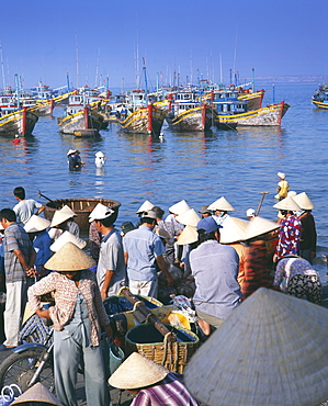 Fishing village people collecting the morning catch from fishing boat fleet, Mui Ne, south-central coast, Vietnam, Indochina, Southeast Asia, Asia