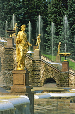 Gold statues and fountains outside the Summer Palace at Petrodvorets in St. Petersburg, Russia, Europe