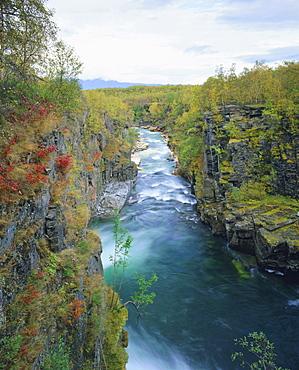 Abisko River Gorge, Abisko National Park, Lappland, Sweden, Scandinavia