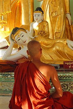 Buddhist monk worshipping, Shwedagon Paya (Shwe Dagon Pagoda), Yangon (Rangoon), Myanmar (Burma)