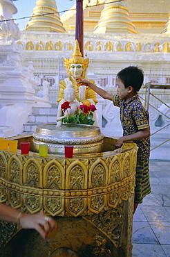 A boy places offerings to the Buddha, Shwedagon Paya (Shwe Dagon pagoda), Yangon (Rangoon), Myanmar (Burma), Asia